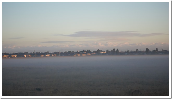 Misty morning in Derrimut